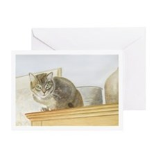 Perched Cat Card Greeting Cards