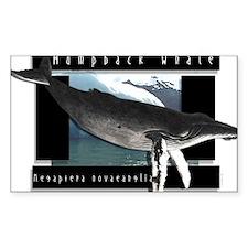 HumpBack Whale Art Rectangle Decal