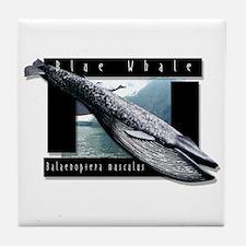 Blue Whale art Tile Coaster