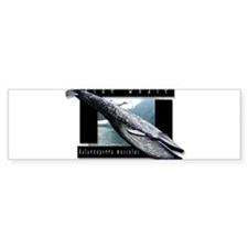 Blue Whale art Bumper Bumper Sticker