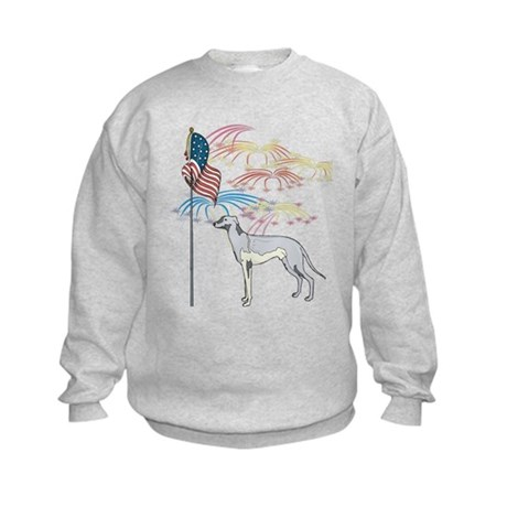 USA Flag Greyhound Kids Sweatshirt