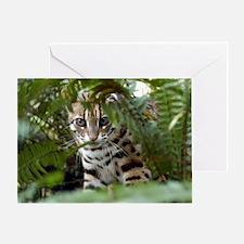 Bengal Cat Greeting Card