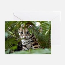 Bengal Cat Greeting Cards (Pk of 10)