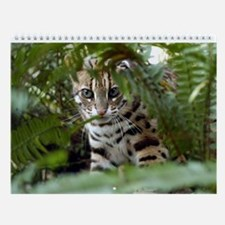 Bengal Cat Wall Calendar