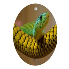 Green Mamba Snake Oval Ornament