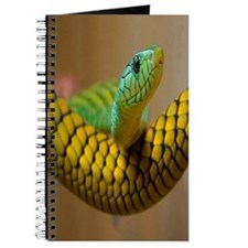 Green Mamba Snake Journal