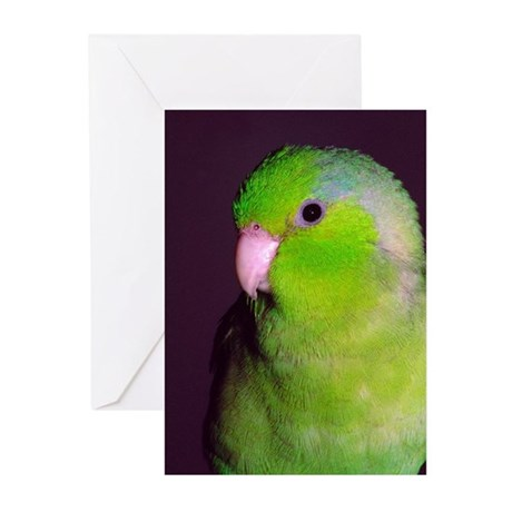 Puck Greeting Cards (Pk of 10)