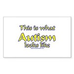 This Is What Autism's Looks L Rectangle Sticker 1