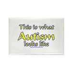 This Is What Autism's Looks L Rectangle Magnet (10