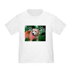 Beagle's Pic T