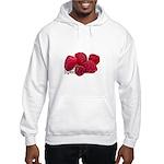 Berry Special Raspberries Hooded Sweatshirt