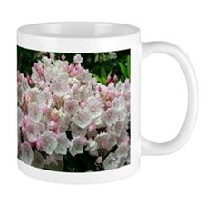 Mountain Laurel Full Bloom Mug