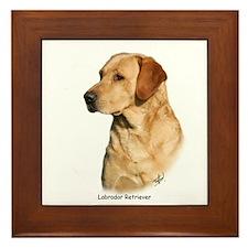 Labrador Retriever 9Y297D-038a Framed Tile