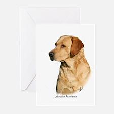 Labrador Retriever 9Y297D-038a Greeting Cards (Pk