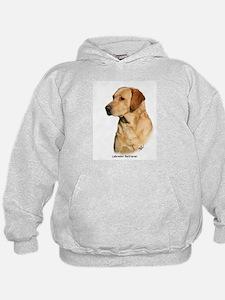 Labrador Retriever 9Y297D-038a Hoodie