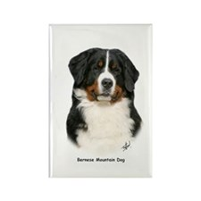 Bernese Mountain Dog 9Y348D-094 Rectangle Magnet