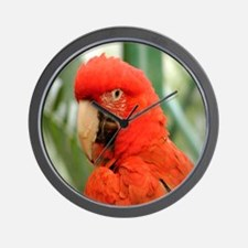 Green Winged Macaw Wall Clock
