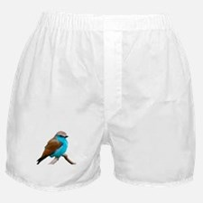Lilac Breasted Roller Boxer Shorts