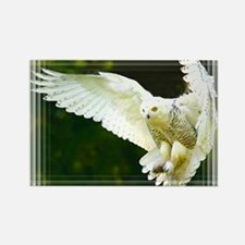Funny Eagle personalized Rectangle Magnet