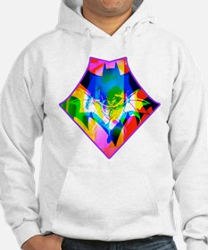 Funny Knight costume Hoodie