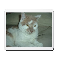 White and Tan Cat Mousepad