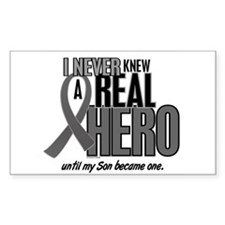 Never Knew A Hero 2 Grey (Son) Rectangle Decal