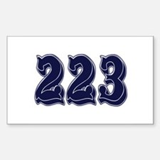 223 Rectangle Decal