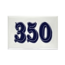 350 Rectangle Magnet