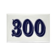 300 Rectangle Magnet
