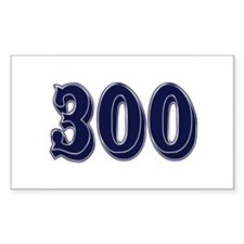 300 Rectangle Decal