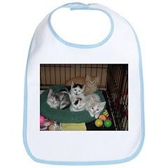 Orange Tabby Cats and Kittens Bib