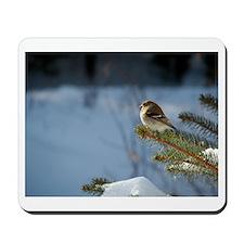 Gold Finch, Mousepad