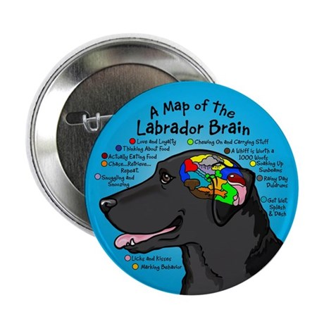 "Black Lab Brain 2.25"" Button"