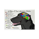 Labrador Magnets