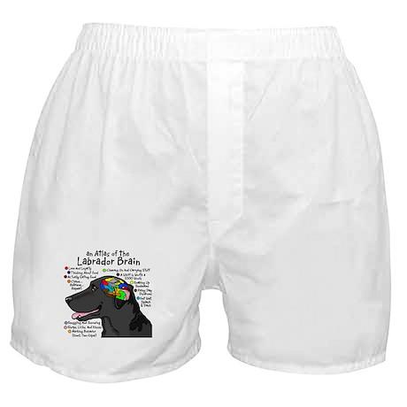 Black Lab Brain Boxer Shorts