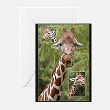Giraffes -  Greeting Cards (Pk of 10)