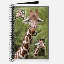 Giraffes - Journal