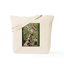 Giraffes -  Tote Bag