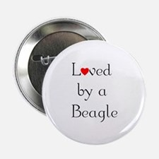Loved by a Beagle Button