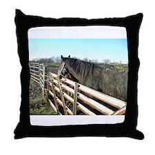 Fabulous Horses Throw Pillow