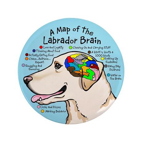 "Yellow Lab Brain 3.5"" Button"