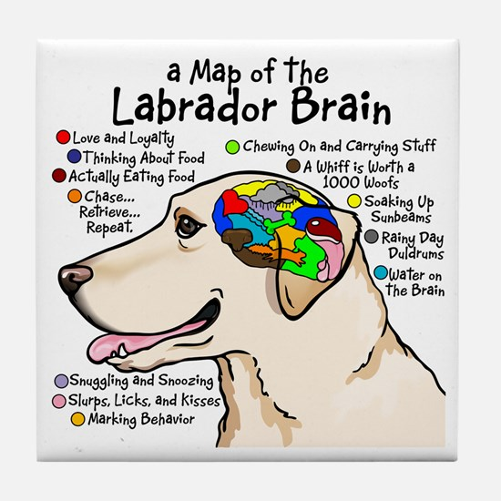 Yellow Lab Brain Tile Coaster
