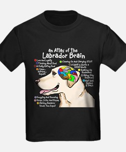 Yellow Lab Brain T