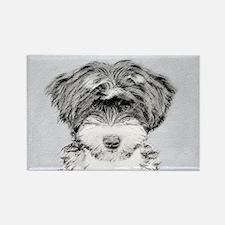 TIbetan Terrier Rectangle Magnet