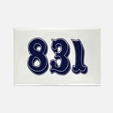 831 Rectangle Magnet