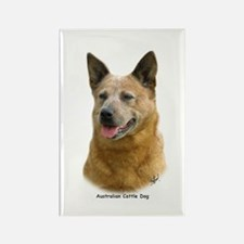 Aust Cattle Dog 9K009D-19 Rectangle Magnet