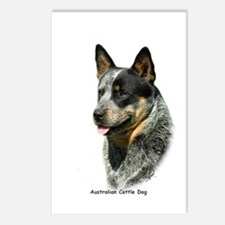 Australian Cattle Dog 9F061D-05 Postcards (Package