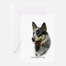 Australian Cattle Dog 9F061D-05 Greeting Card