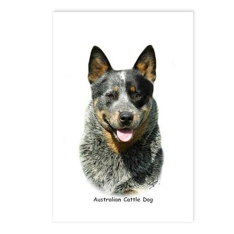 Australian Cattle Dog 9F061D-03 Postcards (Package