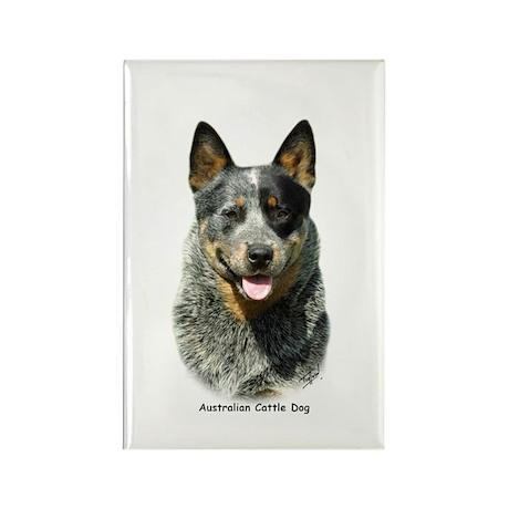 Australian Cattle Dog 9F061D-03 Rectangle Magnet (